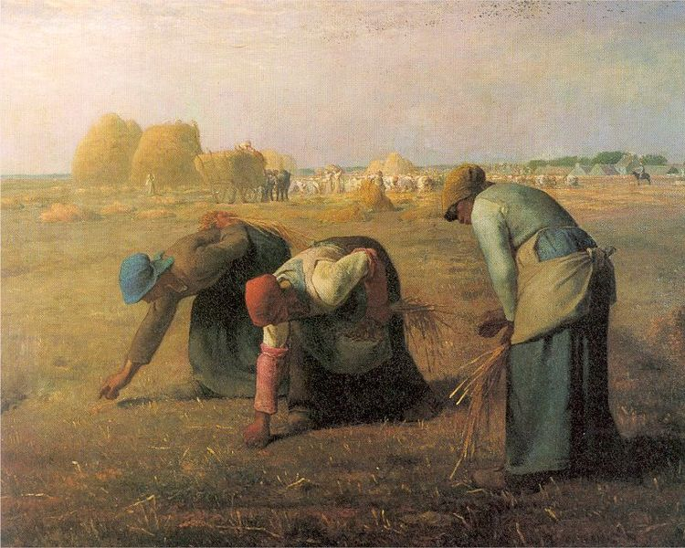 Gleaning