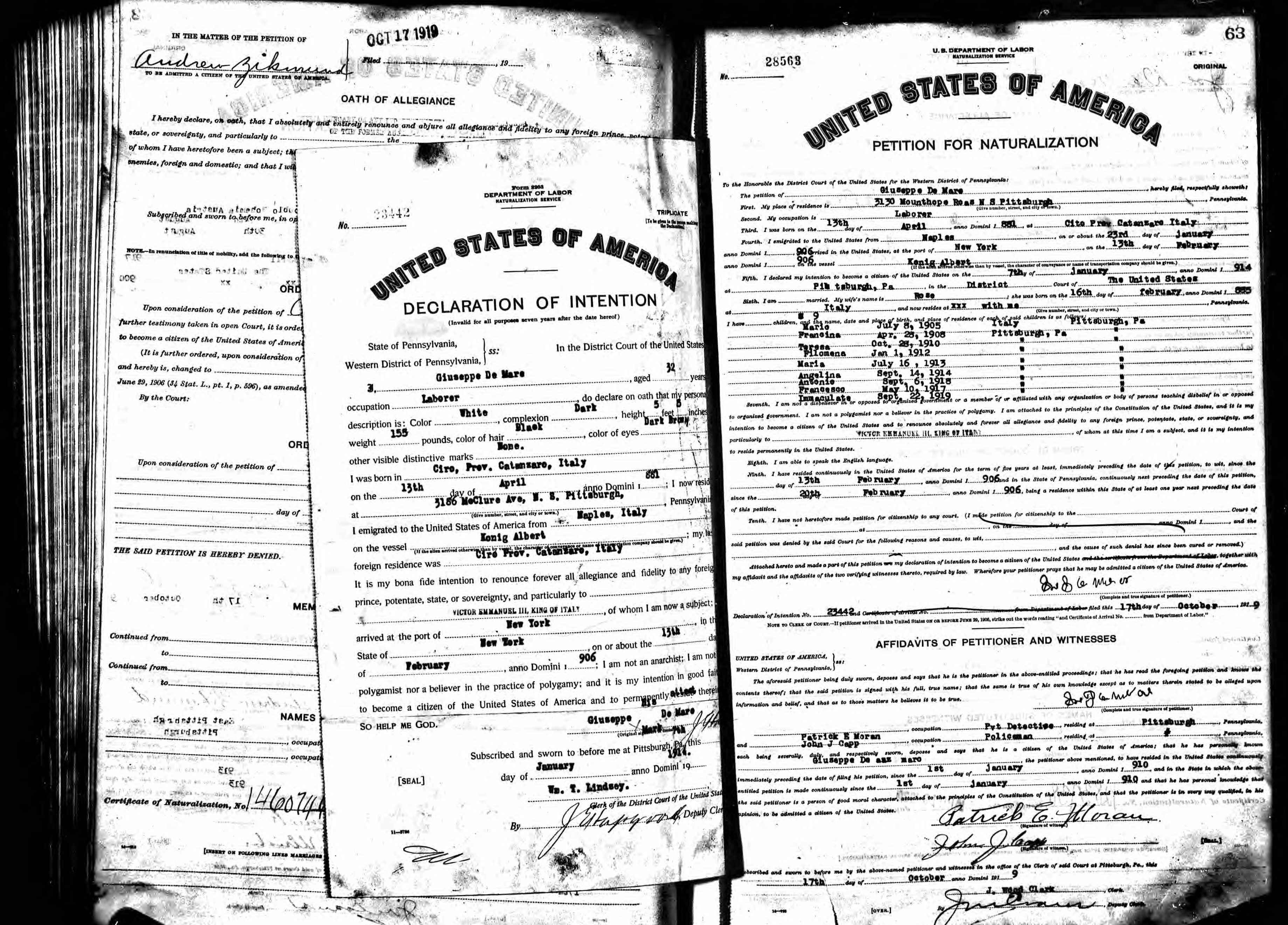petititon for naturalization_demar