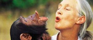 Scientist Declares, 'I am not a child of monkeys'